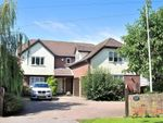 Thumbnail for sale in Felsted, Dunmow, Essex