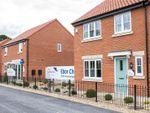 Thumbnail to rent in Langton Road, Norton, Malton