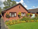Thumbnail to rent in 23 Goylands, Howey, Llandrindod Wells