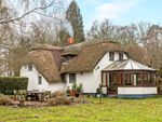 Thumbnail for sale in Winchester Road, Ampfield, Romsey, Hampshire