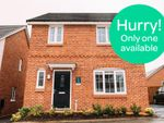 Thumbnail to rent in Pretoria Road, Oldham