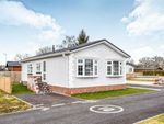 Thumbnail to rent in Sheriff Hutton Road, Strensall, York