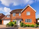 Thumbnail for sale in Knox Road, Guildford