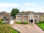 Thumbnail to rent in Larchdene, Farnborough Park, Kent