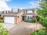 Thumbnail for sale in Copandale Road, Beverley