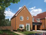 Thumbnail to rent in The Neate At Saxon Meadows, Capel St Mary, Suffolk