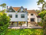 Thumbnail for sale in Boyne Park, Tunbridge Wells, Kent