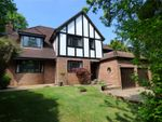 Thumbnail for sale in Wellhouse Road, Beech, Alton, Hampshire
