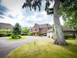 Thumbnail for sale in Old Warwick Road, Lapworth, Solihull