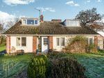 Thumbnail for sale in Mill Close, Blofield Heath, Norwich