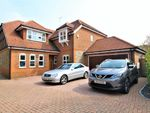 Thumbnail for sale in Damask Close, Tring