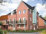 "Thumbnail to rent in ""The Taunton"" at Hill Farm Close, Newmarket Road, Cringleford, Norwich"