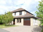 Thumbnail for sale in Lumsden Crescent, St Andrews, Fife