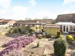 Thumbnail for sale in Woodlands Avenue, Tadcaster