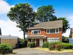 Thumbnail to rent in The Spinney, Handsworth Wood, Birmingham