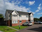 Thumbnail to rent in The Oaklands, Castleton