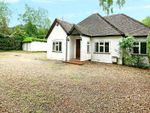 Thumbnail for sale in Tilford Road, Rushmoor, Farnham, Surrey
