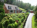 Thumbnail to rent in Hi View, Abermule, Montgomery, Powys