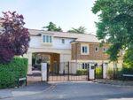 Thumbnail to rent in Paynetts Court, Weybridge, Surrey