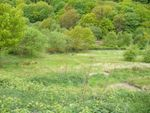 Thumbnail for sale in Grazing Land At Daisy Hill, Sacriston, Durham
