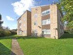 Thumbnail to rent in Hayling Court, Crawley