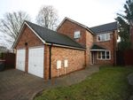 Thumbnail to rent in Toad Pond Close, Swinton