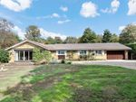 Thumbnail for sale in Maybourne Rise, Woking