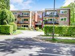 Thumbnail to rent in Clysbarton Court, Bramhall, Stockport