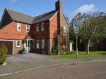 Thumbnail for sale in Shepherds Way, Everton, Lymington, Hampshire