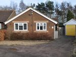 Thumbnail for sale in Ward Road, Ipswich