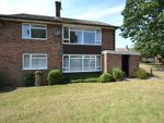 Thumbnail to rent in Gorse Walk, Colchester