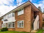 Thumbnail to rent in Sheridan Avenue, Caversham, Reading