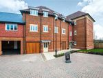 Thumbnail for sale in Charlock Place, Warfield, Bracknell