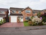 Thumbnail to rent in Malford Grove, Abergavenny
