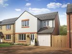 """Thumbnail to rent in """"The Leith"""" at Lanton Road, Falkirk"""