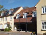 Thumbnail to rent in Herne Road, Herne Farm, Petersfield