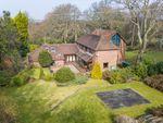 Thumbnail for sale in Biddenfield Lane, Wickham, Fareham