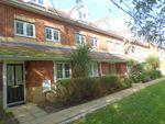 Thumbnail to rent in Dougall Close, Tunbridge Wells