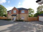 Thumbnail to rent in Elmhurst Gardens, Hilperton Road, Trowbridge