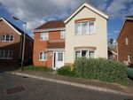 Thumbnail to rent in Speedwell Way, Norwich