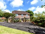 Thumbnail for sale in Fairfield Close, Lymington, Hampshire