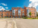 Thumbnail to rent in Bishophill Junior, York
