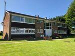 Thumbnail to rent in Millpool Close, Hagley, Stourbridge