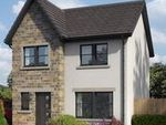 Thumbnail to rent in The Avenue, Lochgelly