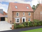 """Thumbnail to rent in """"Buckingham"""" at Driffield Road, Beverley"""