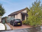 Thumbnail to rent in Castleview Avenue, Paisley, Renfrewshire