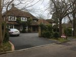 Thumbnail for sale in Collington Rise, Bexhill-On-Sea