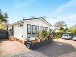 Thumbnail for sale in Pinehurst Park, West Moors, Ferndown