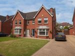 Thumbnail for sale in 12, Orby Close, Belfast