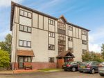 Thumbnail to rent in Porthcawl Court, Preston, Lancashire